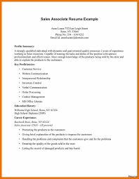 sales associate resume template resume summary exles for sales associate best of it retail 31a