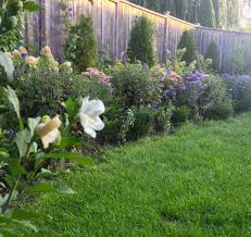 style to move blog my backyard garden before and after