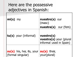 spanish possessive adjectives chart real fitness
