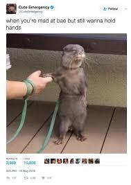 Good Relationship Memes - girl memes