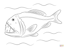 fangtooth fish coloring page free printable coloring pages