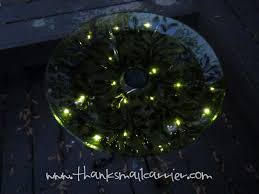 Bird Solar Lights by Thanks Mail Carrier Plow U0026 Hearth And Thompson U0027s Waterseal