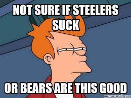 Steelers Suck Meme - image jpg