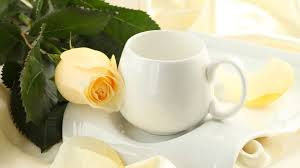 flower rose photography harmony silk nice petals tea flower