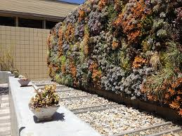 how to make a vertical garden guide tips ideas install it direct