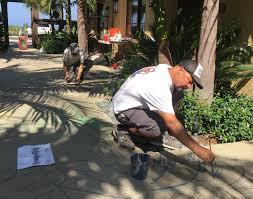 hilton grand vacation club seaworld floor plans hilton grand vacation club at marbrisa calypso cay resort