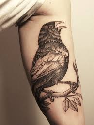 the impression of the inner arm bird tattoos popular