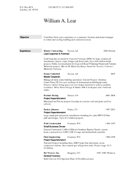 Career Objective In Resume Curriculum Vitae General Career Objective Resume Big Show Sic