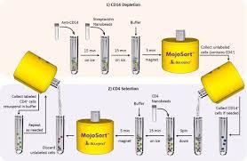 biolegend protocol mojosort human cd4 t cell selection protocol