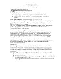 Report Essay Format Lab Report Write Up Format