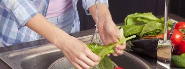 formation cuisine à distance séance de formation à distance en hygiène et salubrité alimentaires