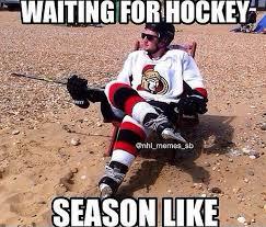 Hockey Memes - 772 best hockey memes images on pinterest hockey stuff hockey and