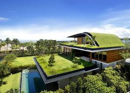 cool garden design idea u2013 green oasis on the roof terrace