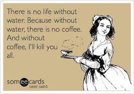 Funny Ecard Memes - funny ecards there is no life without water