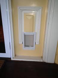 Exterior Dog Doors by Exterior Doors With Pet Door Built In Examples Ideas U0026 Pictures