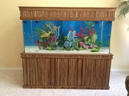 Home Aquarium Aquarium Maintenance Las Vegas Infinity Aquarium