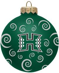 hawaii rainbow warriors 3
