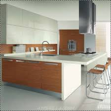 Built In Kitchen Islands Kitchen Room Witching Modern Style Kitchen Interior Brown Wooden