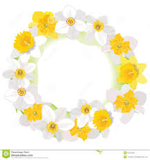 flower daffodil frame isolated on white background floral decor
