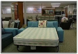 Sleeper Sofa Mattress Awesome Comfortable Sleeper Sofa Mattress - Sleeper sofa mattresses replacement