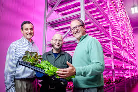 philips led grow light gigaom philips continues its lighting revolution tweaking leds