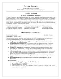 Sample Sales Representative Resume by Example Accounting Manager Resume Http Www Resumecareer Info