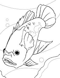 aquarium fish coloring pages handipoints