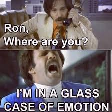 Ron Meme - ron meme
