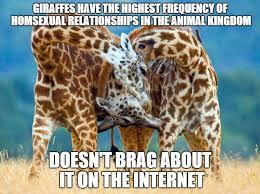 Drunk Giraffe Meme - doesn t brag about it on the internet funny giraffe meme photo