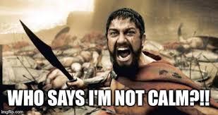Calm Meme - sparta leonidas meme imgflip