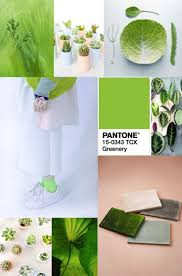 94 best pantone 2017 colour of the year italianbark images on