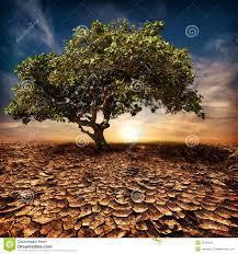 desert landscape background global warming concept stock photo
