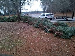 usace providing drop off sites for christmas trees wbhf