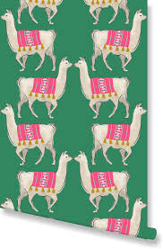 llama wrapping paper leopard coral wallpaper by clairebella