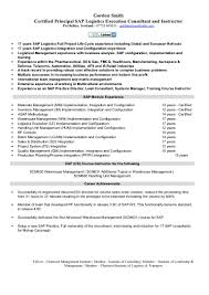 Sap Fico Sample Resume 3 Years Experience Sap Logistics Execution Consultant Cv