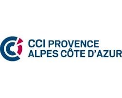 chambre de commerce alpes maritimes partenaires de paca emergence le réseau des cci