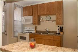 Kitchen Cabinets Second Hand by Used Kitchen Cabinets Craigslist Inspirational Design 5 Kitchens