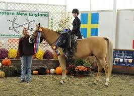 New England Standings by Western New England Professional Horseman U0027s Association