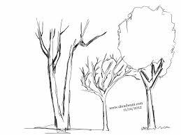 three trees sketch u2026 ali u0027s photography space