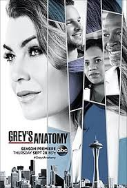 Seeking Saison 1 Wiki Grey S Anatomy Season 14