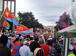 Eritrean Flag Pictures And Videos Of Eritrean Demonstration In Geneva Against