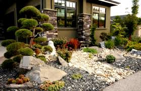 desert backyard landscaping ideas home decorating and tips rock