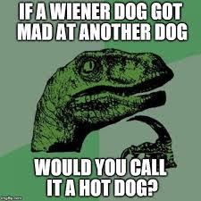 Wiener Dog Meme - philosoraptor meme imgflip