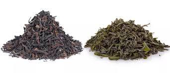 Teh Hitam nutrisi perbedaan teh hijau dan teh hitam sehatfresh