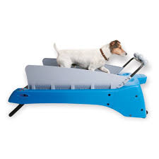 15 high tech gadgets to pamper your dog part 2