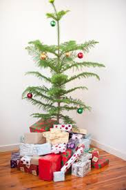 photo of modern simple natural christmas tree free christmas images