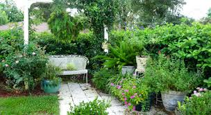 Garden Bench With Trellis by White Bench Under A Trellis In A Beautiful Country Garden Of
