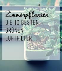 grünpflanzen im schlafzimmer die besten 25 zimmerpflanze ideen auf pflanzen