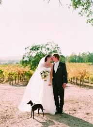 how to include your dog in your wedding dog ring bearer