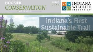 plants native to indiana indiana wildlife common sense conservation indiana wildlife
